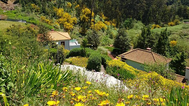 Cantinho Rural Place: Camacha Photo: Cantinho Rural