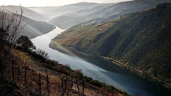 Douro With Soul Photo: Douro With Soul