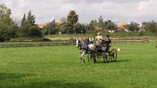 Feira Nacional do Cavalo - Golegã 地方: Golegã 照片: Feira Nacional do Cavalo