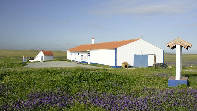 Vale Gonçalinho Environmental Education Centre