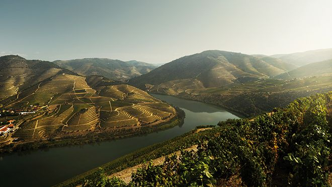 Alto Douro&#10Photo: Filipe Rebelo