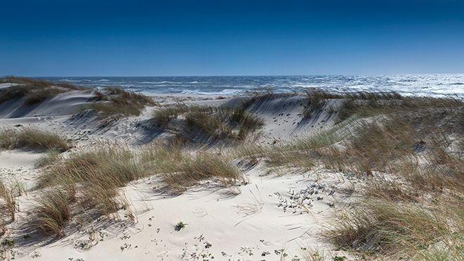 Praia de São Jacinto&#10Luogo: Aveiro&#10Photo: Shutterstock_AlexMorozov