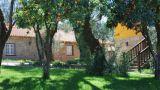 Quinta de Caldezes - Casa das oliveiras Place: Moure Photo: Quinta de Caldezes