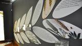 Núcleo Museológico Favaios, Pão e Vinho