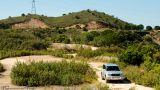 TN Nature Tours&#10Local: São Bartolomeu de Messines&#10Foto: TN Nature Tours