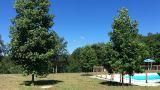 &#10Plaats: Garfe&#10Foto: Garfepark Camping