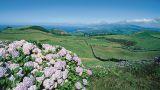 Monte da Achada - Ilha Terceira&#10Local: Ilha Terceira - Açores&#10Foto: João Paulo