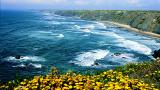 Beach&#10Place: Costa Vicentina&#10Photo: Turismo do Algarve