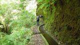Levada Local: Lombo do Urzal Foto: Turismo da Madeira