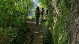 Levada 場所: Madeira 写真: Turismo da Madeira
