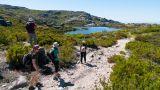 Wildlife Portugal&#10地方: Guarda&#10照片: Wildlife Portugal