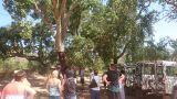 Zebra Safari Tours&#10Ort: Albufeira&#10Foto: Zebra Safari Tours