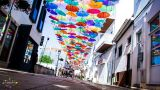 Agitágueda&#10場所: Águeda - Rua Luís de Camões&#10写真: Patrick Ferreira