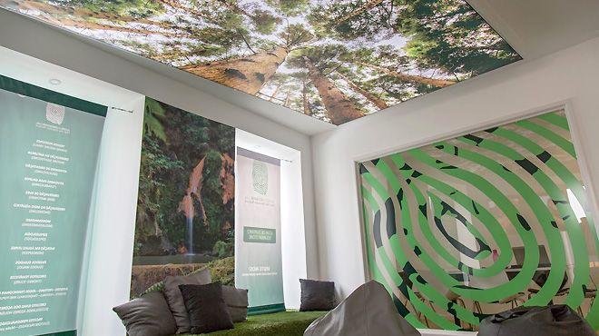 Azores Greenmark Place: São Miguel - Açores Photo: Azores Greenmark