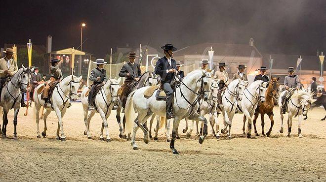 Feira Nacional do Cavalo Place: Golegã Photo: Feira Nacional do Cavalo