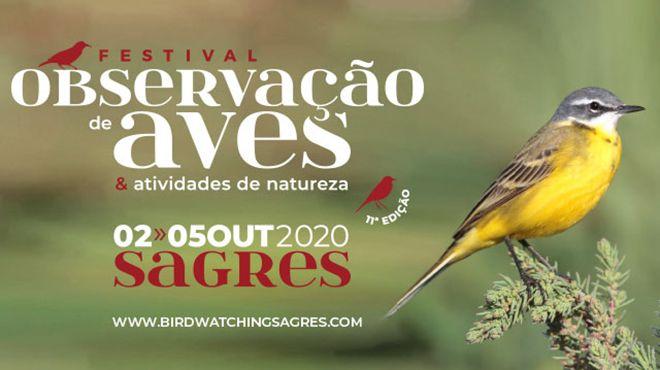 Festival de Observação de Aves 2020