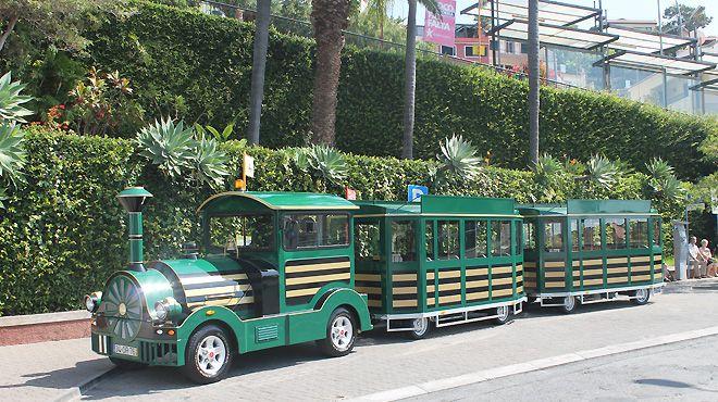 Madeira-Green-Train Место: Funchal Фотография: Madeira-Green-Train