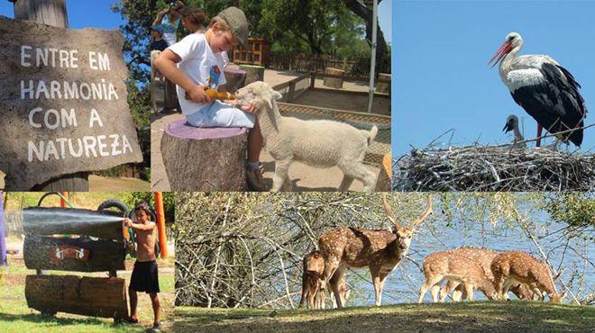 Monte Selvagem - Reserva Animal