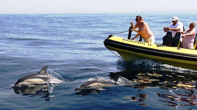 Dream Wave - Atividades Marítimo Turísticas, Lda