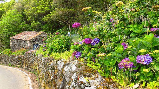 Delegação de Turismo - Terceira Lieu: Açores Photo: Floreesha - Turismo dos Açores