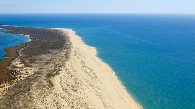 Praia da Ilha da Barreta / Ilha Deserta Фотография: Turismo do Algarve