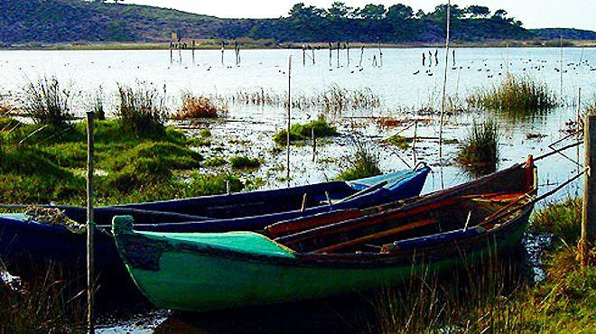 Reserva Natural das Lagoas de Santo André e da Sancha