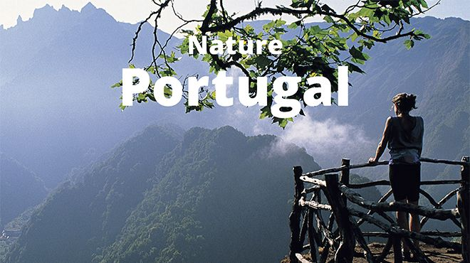 Natureza - Brochura Digital -d