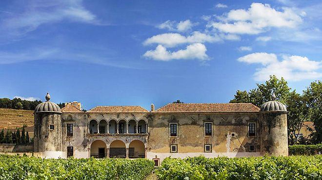 Palácio-e-Quinta-da-Bacalhôa&#10Ort: Ferreira do Zêzere&#10Foto: Vineyard Tours