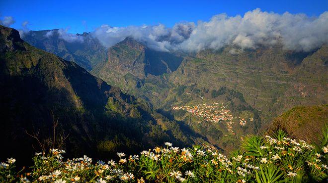 Parque Natural da Madeira Place: Madeira Photo: AP Madeira_Francisco Correia