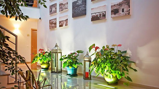Solar de Alqueva  Place: Reguengos de Monsaraz