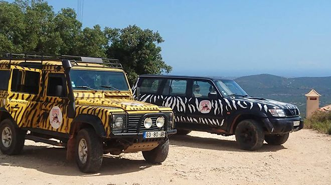 Zebra Safari Tours Luogo: Albufeira Photo: Zebra Safari Tours