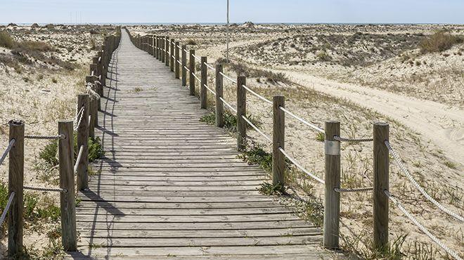 Praia da Ilha da Armona Luogo: Ilha da Armona - Olhão Photo: Shutterstock_AG_Carlos Neto