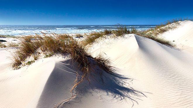 Praia De São Jacinto Wwwvisitportugalcom