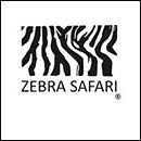 Zebra Safari Tours