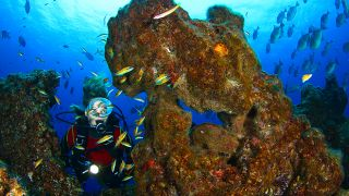 Mergulho Lugar Açores Foto: Turismo dos Açores / Nuno Sá