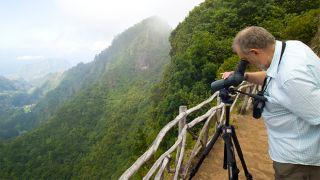 Birdwatching Local: Floresta Laurisilva Foto: Ventura