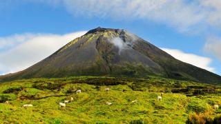 O cume do Pico visto do seu sopé&#10Ort: Ilha Do Pico nos Açores&#10Foto: Maurício de Abreu