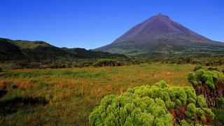 Pico Ort: Pico Foto: Turismo dos Açores