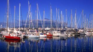 Marina da Horta Place: Ilha do Faial nos Açores Photo: Turismo de Portugal