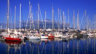 Marina da Horta Local: Ilha do Faial nos Açores Foto: Turismo de Portugal