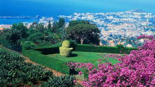 Gartenanlagen Parks Und Quintas Landgüter Auf Madeira