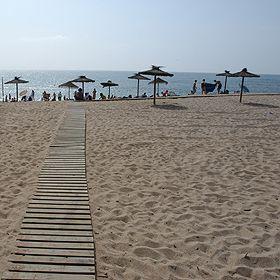 Praia de São LourençoLugar EriceiraFoto: ABAE