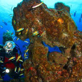 MergulhoLugar AçoresFoto: Turismo dos Açores / Nuno Sá