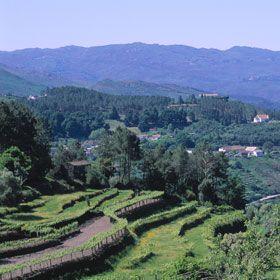 SoajoPlace: MinhoPhoto: Turismo de Portugal