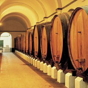 Pipes of winePhoto: Turismo Centro de Portugal