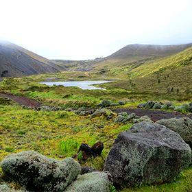 Delegação de Turismo de São MiguelFoto: Floreesha - Turismo dos Açores