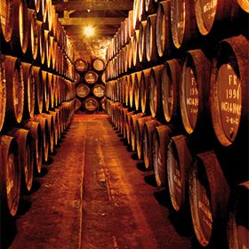 Caves do Vinho do Porto