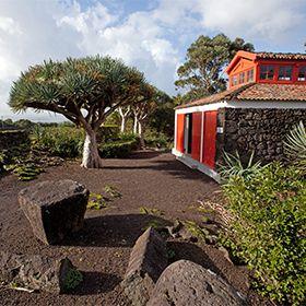Museu do Vinho - Pico地方: Pico照片: Carlos Duarte -Turismo dos Açores