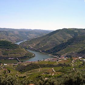 Cinco olhares sobre o Douro
