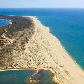 Praia da Ilha da Barreta / Ilha DesertaPhoto: Turismo do Algarve